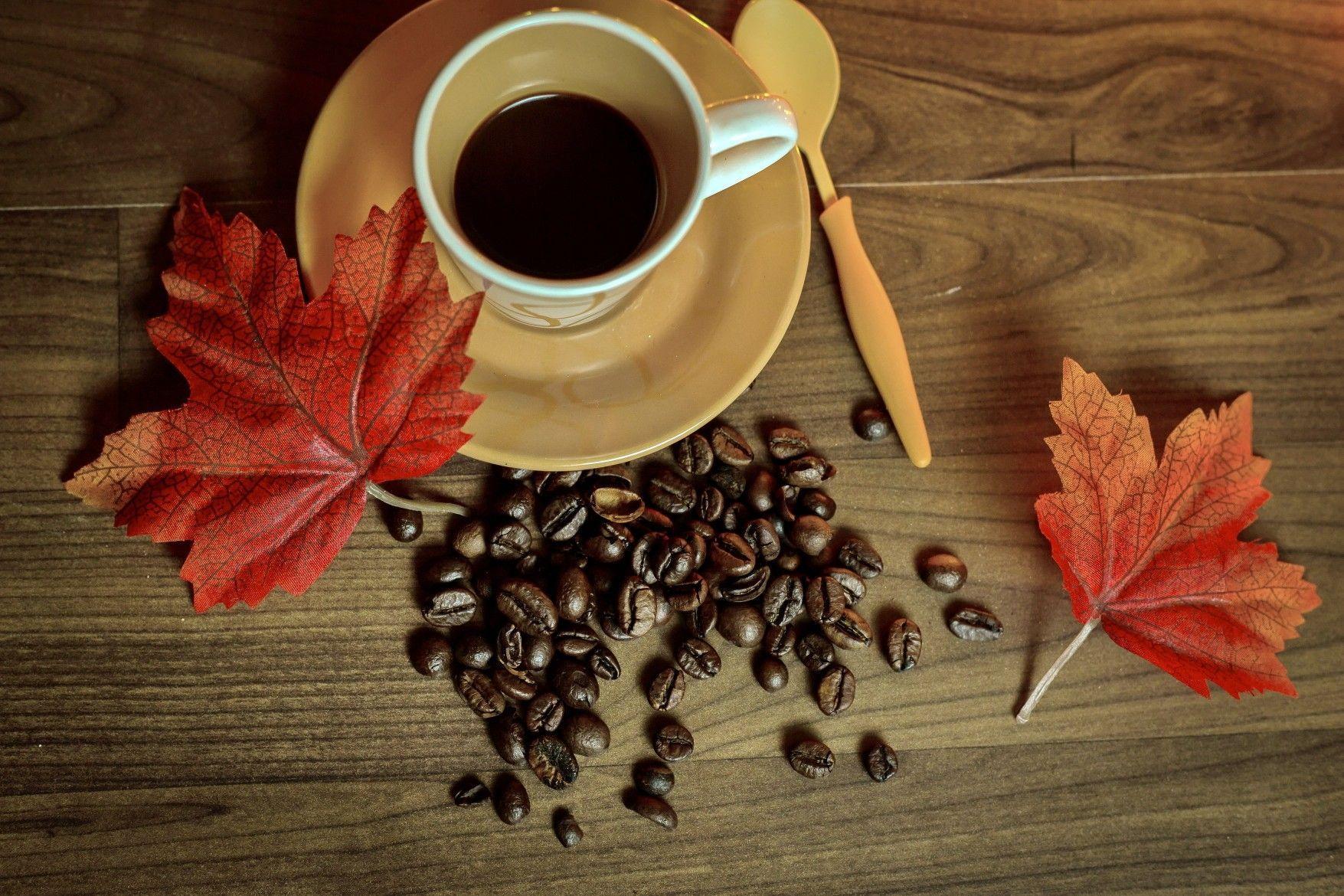 35+ Tasse kaffee bilder kostenlos Trends