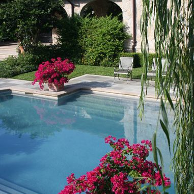 Step Down Pool Design Ideas, Pictures, Remodel, and Decor - page 18