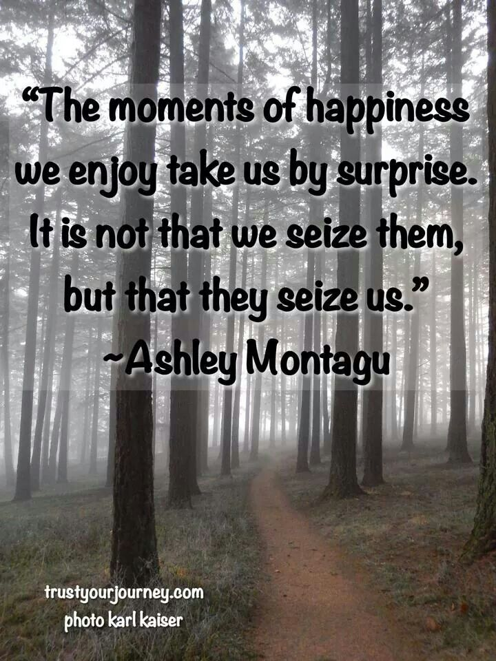 Moments of happiness seize us be yourself quotes in