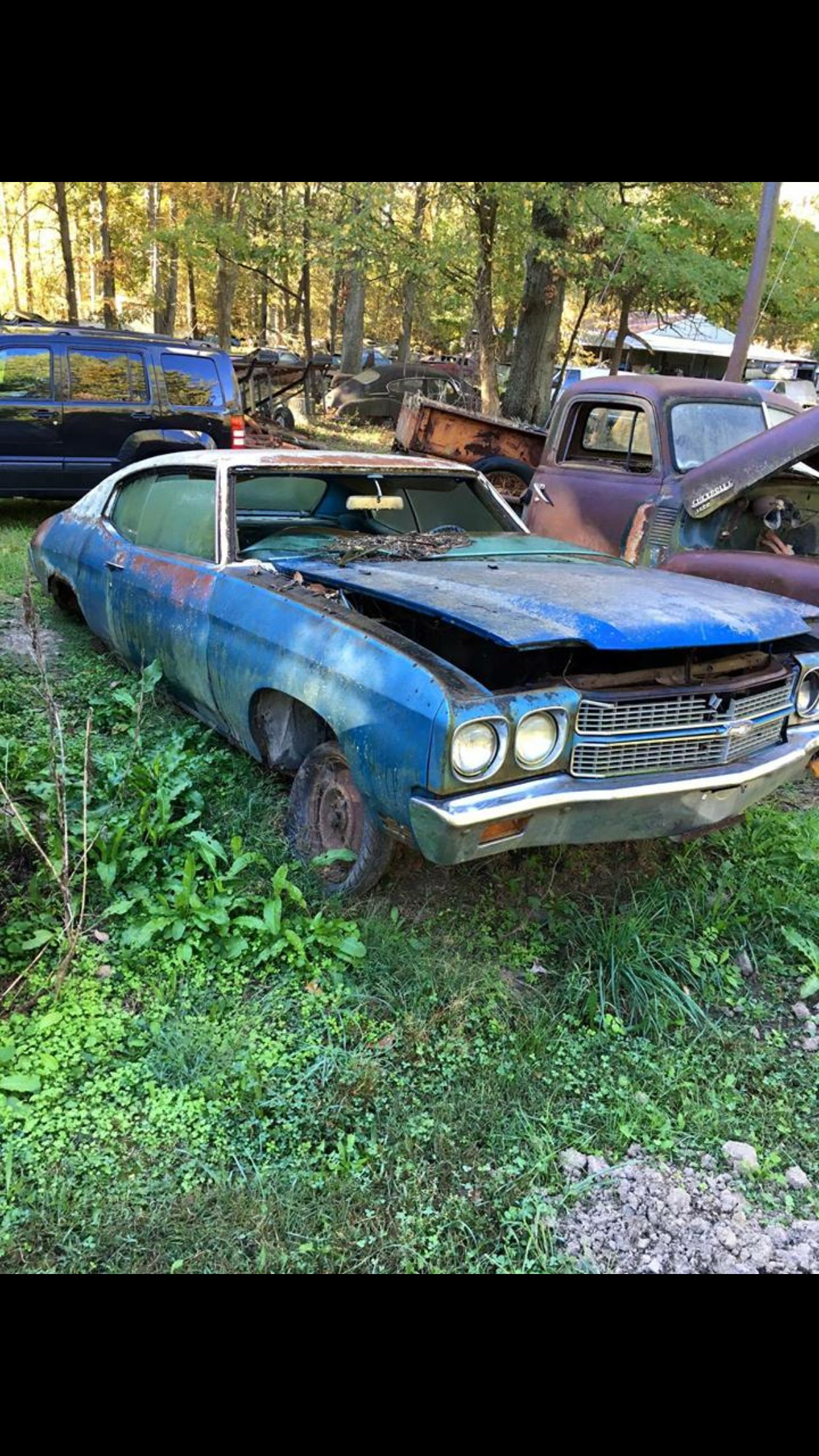 Chevelle Chevelle Car Abandoned Cars Barn Find Cars