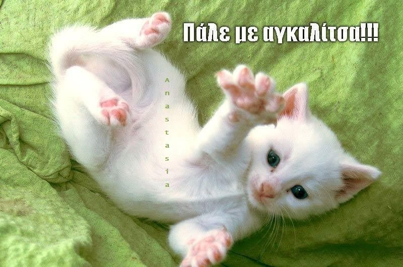 give me a hug♥♥♥
