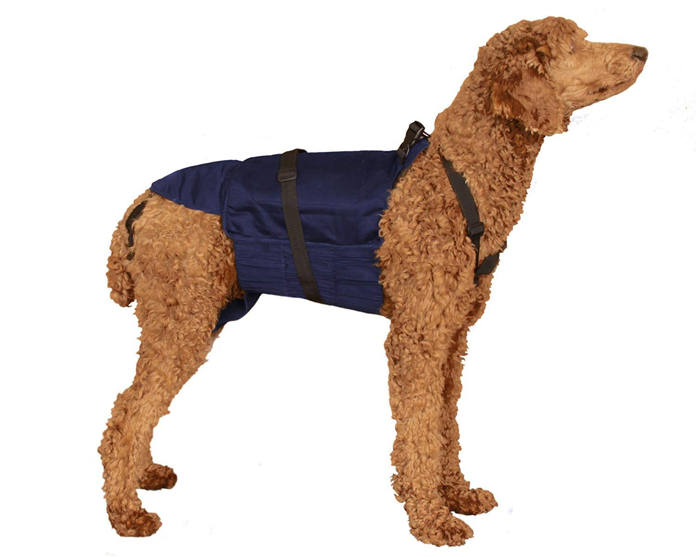 Sammydoo Pet Diaper Wrap Fits Approximately 40 Pound To 75 Pound