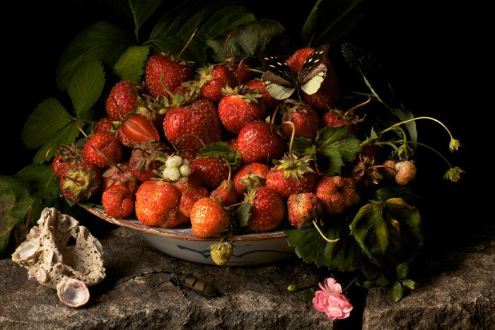 Strawberries 2009 © Paulette Tavormina