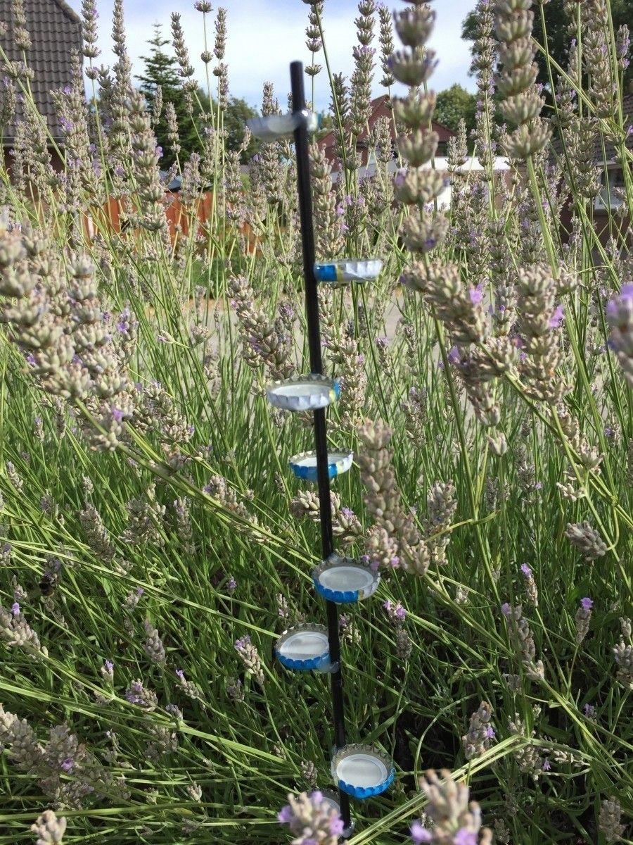 Insektentränke mit Landemöglichkeit bauen   Frag Mutti