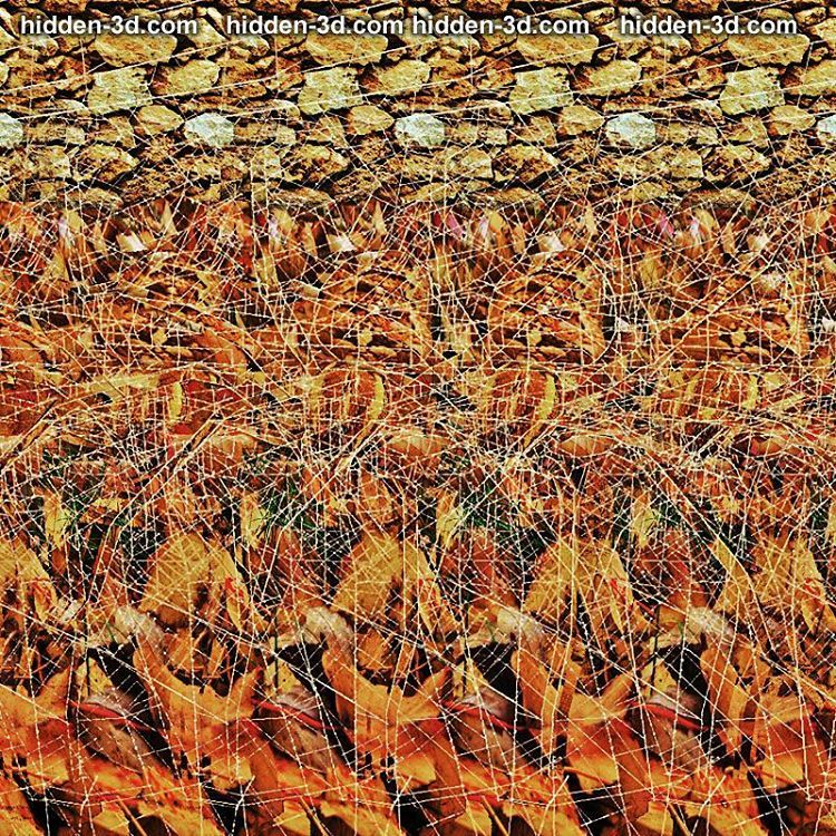 0 Likes, 1 Comments - 3D Stereograms (@3dstereogram) on ...