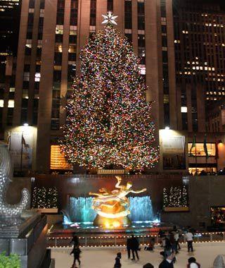 America S Tallest Christmas Trees Tall Christmas Trees Christmas Tree New York Christmas Tree
