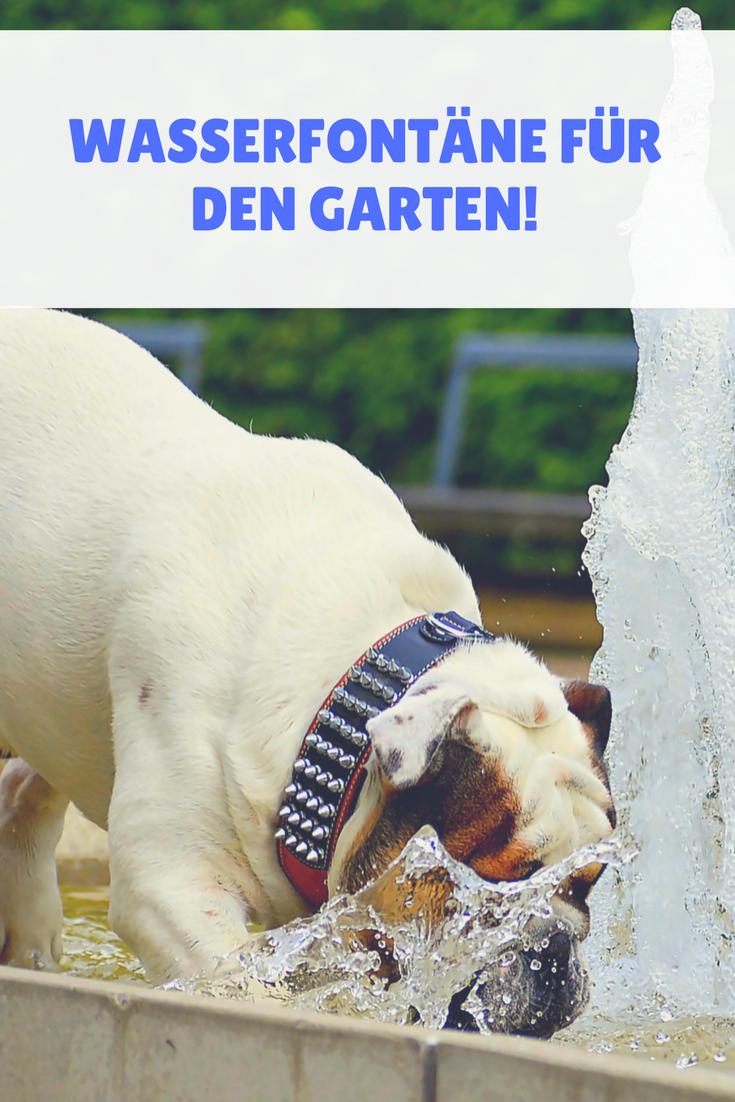 Eine Wasserfontäne für den Garten - Spaß ohne ende | Hunde garten ...