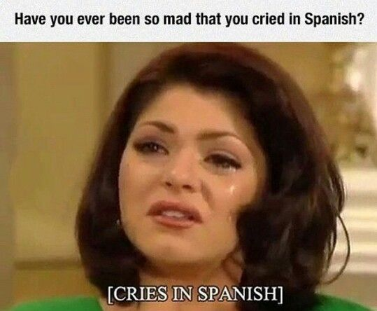 Uuhh Idk What Cries In Spanish Means But I Bet I Ve Done It Cries In Spanish Spanish Jokes Hilarious