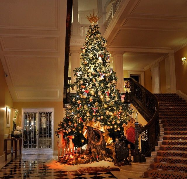 Huge Christmas Tree In The Middle Of The House Need Tall Ceilings For This One Christmas Apartment Christmas Tree Christmas Foyer