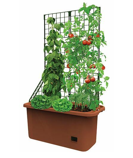 Outdoor Pot Patio Courtyard Garden Planter Box Large Trellis Vegetable  Container - Outdoor Pot Patio Courtyard Garden Planter Box Large Trellis