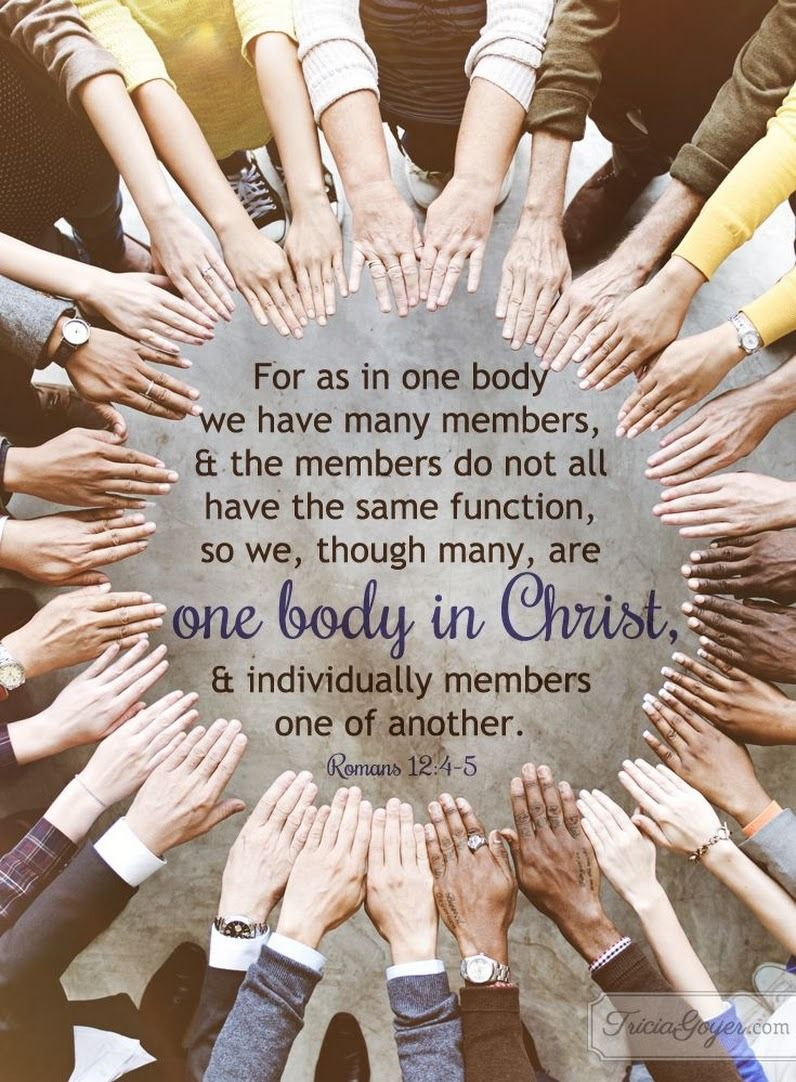 romans 1245 esv for as in one body we have many