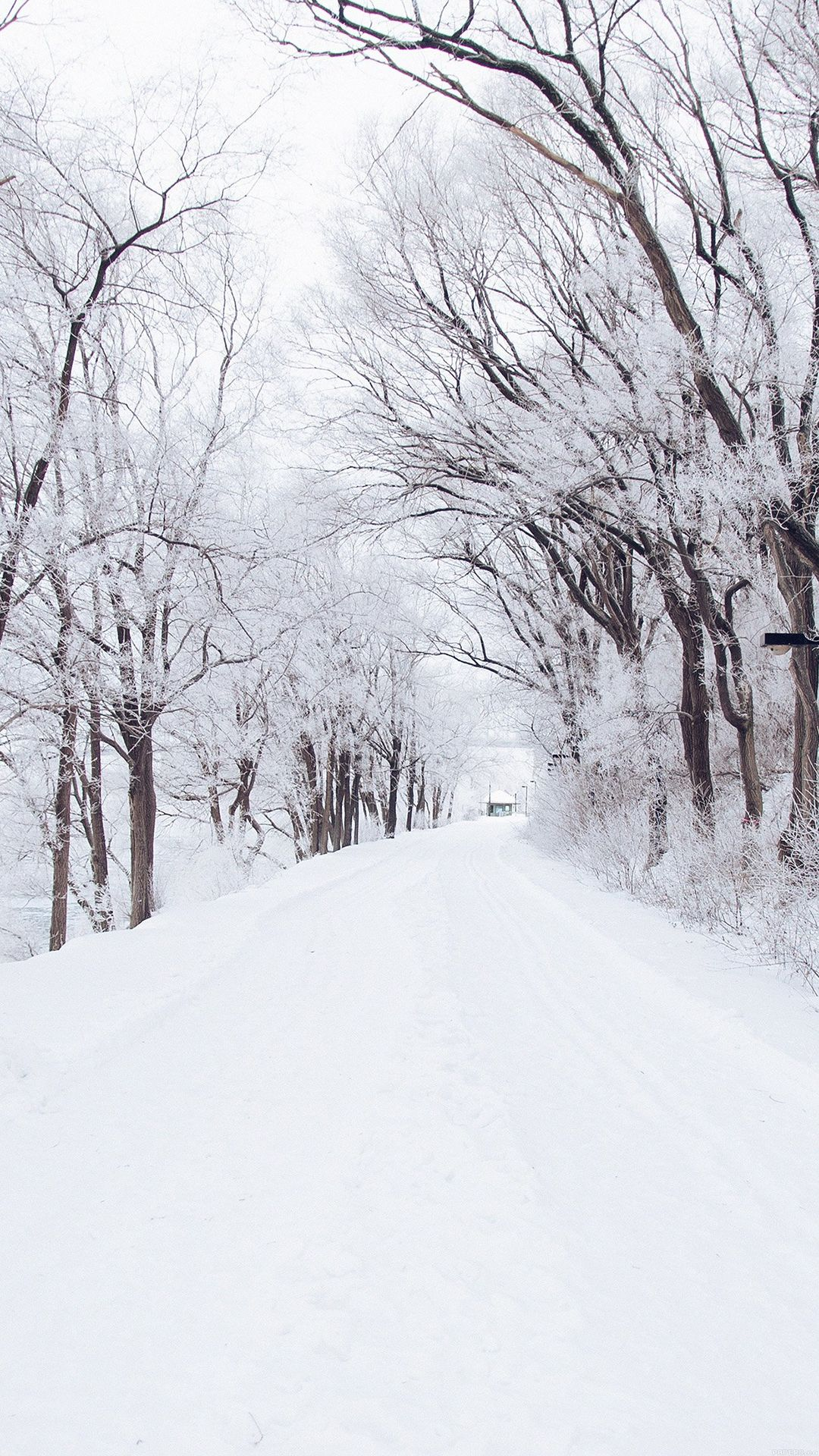 Winter Road Romantic Nature Snow White Iphone 8 Wallpapers