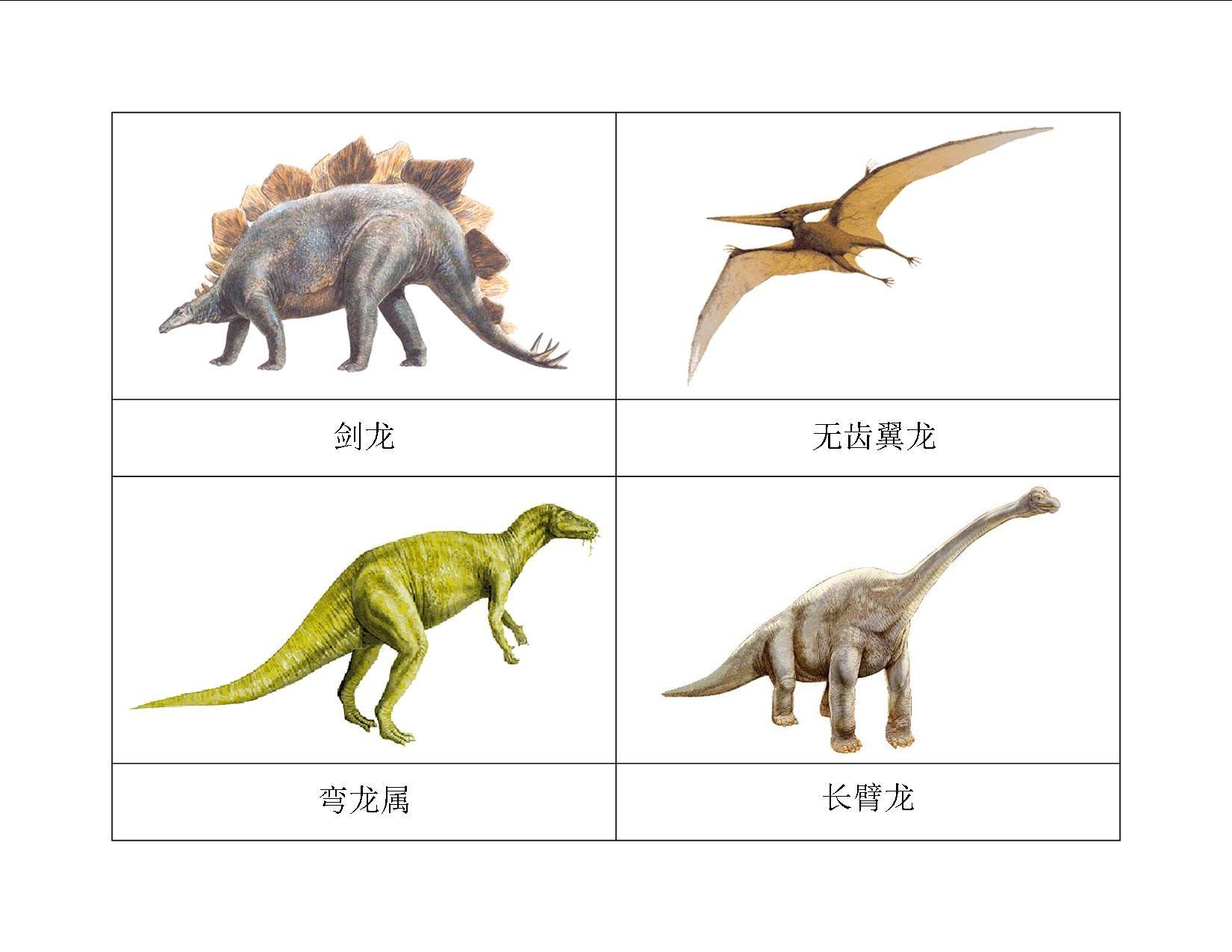 Latest Chinese Montessori Materials