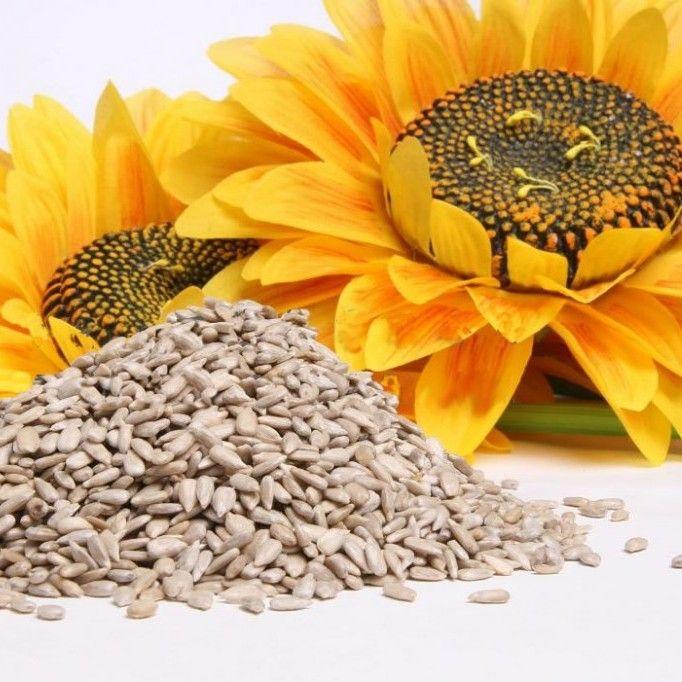 Conoce las mejores semillas que te pueden ayudar a bajar de peso. Además son saludables, ricas en fibra y capaces de mejorar nuestra calidad de vida. ¡Descúbrelas!