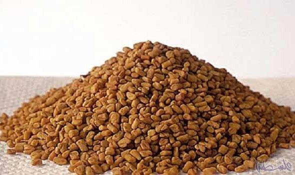 فوائد الحلبة الحصى للجسم تخفيف السعال وضيق الحلبة هي عشب ينمو عادة في دول البحر المتوسط ويستخدم على نطاق واسع في علاج بع Food Animals Food Dog Food Recipes