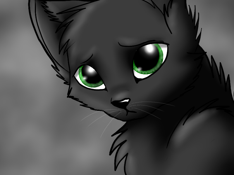 Hollyleaf, daughter of Brambleclaw and Squirrelflight (actually