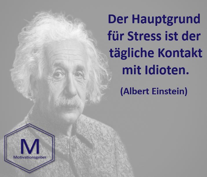 Der Hauptgrund Fur Stress Ist Der Tagliche Kontakt Mit Idioten Stress Idioten Einstein