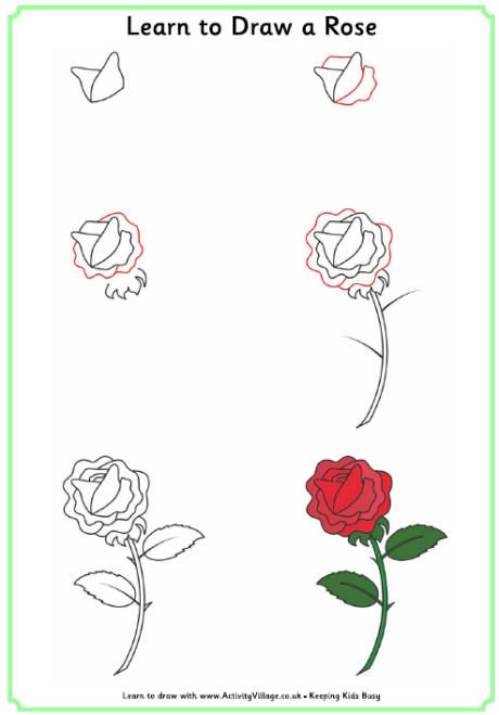 Learn to draw a rose kids pinterest learning draw and doodles