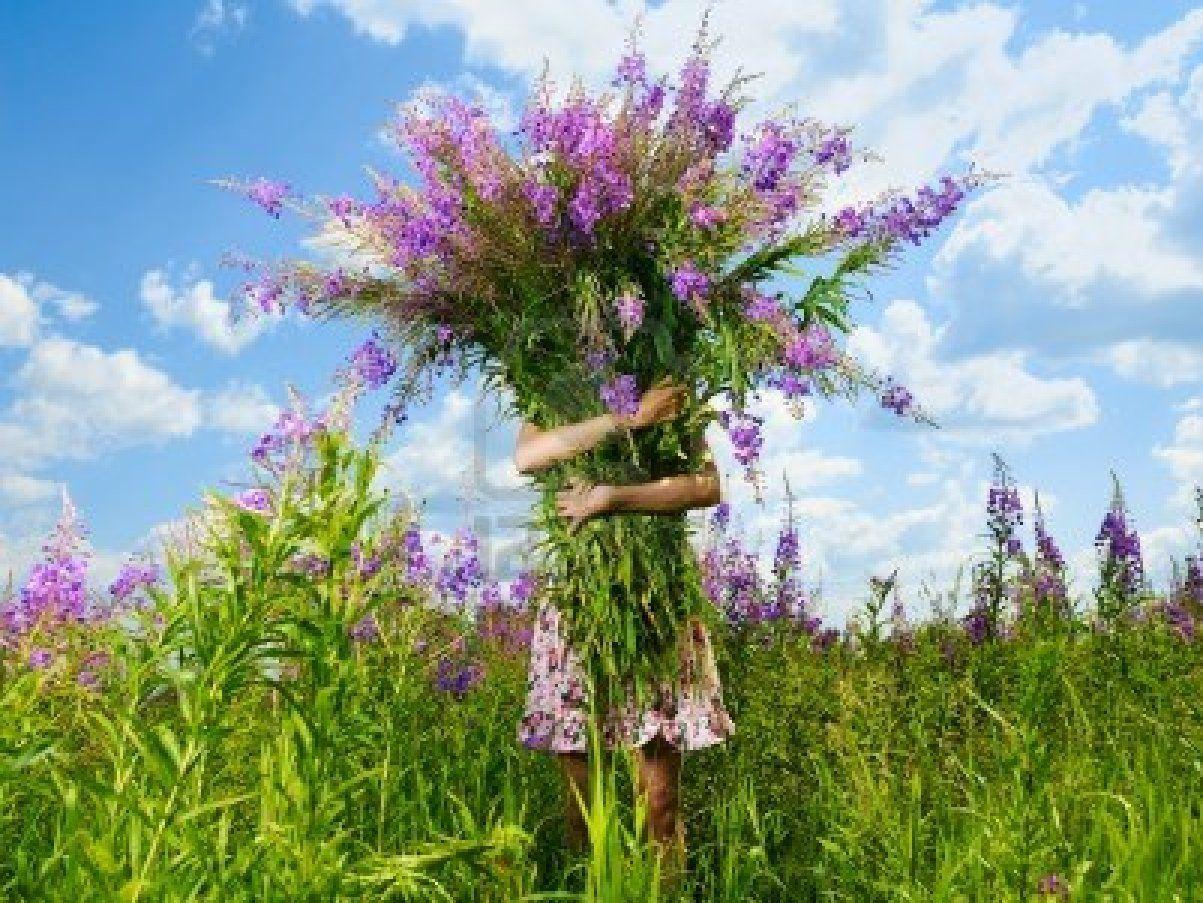 Bijbelcitaten : Gigantische bos bloemen kleurrijke schilderijen