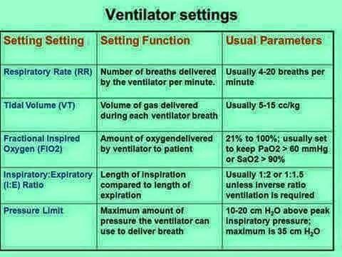 Vent Settings Nursing Icu nursing, Critical care nursing