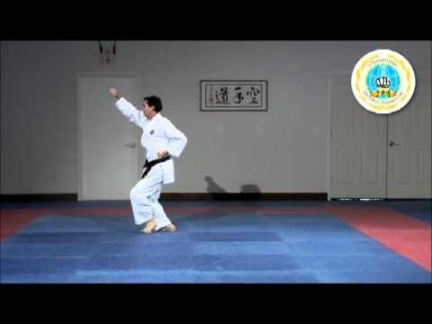 Kihon Kata Ni Videos International Hayashi Ha Shito Ryu Karate