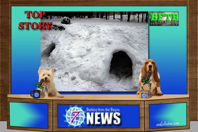 BFTB NETWoof News Top Story is a collapsed snow fort rescue