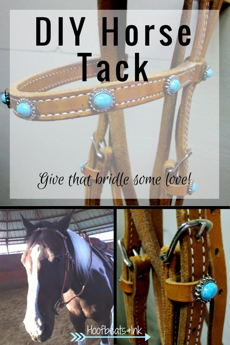 diy horse tack decorate your horse 39 s bridle via