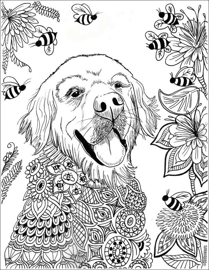 Sugar S Bee Utiful Summer Coloring Page Summer Coloring Pages