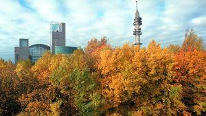 Iso Paja syksyllä.