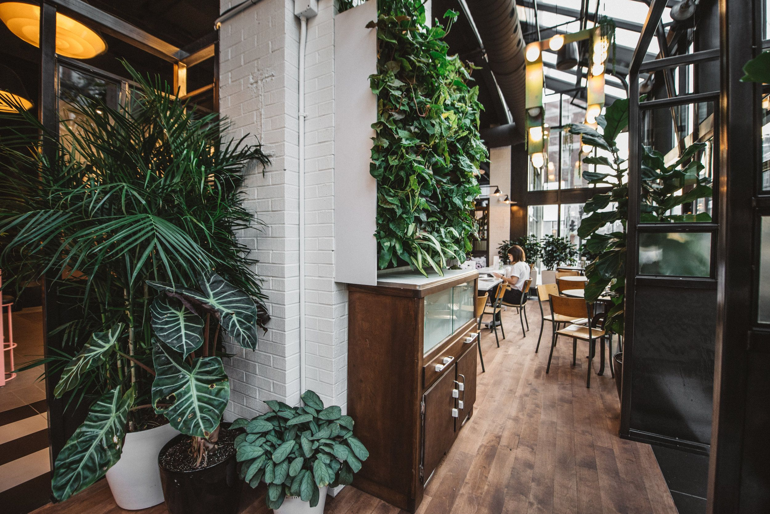 Plante Dans Une D Co Industrielle Style Industriel Pinterest  # Recherche Vestiaire A Transforme En Rack Sono