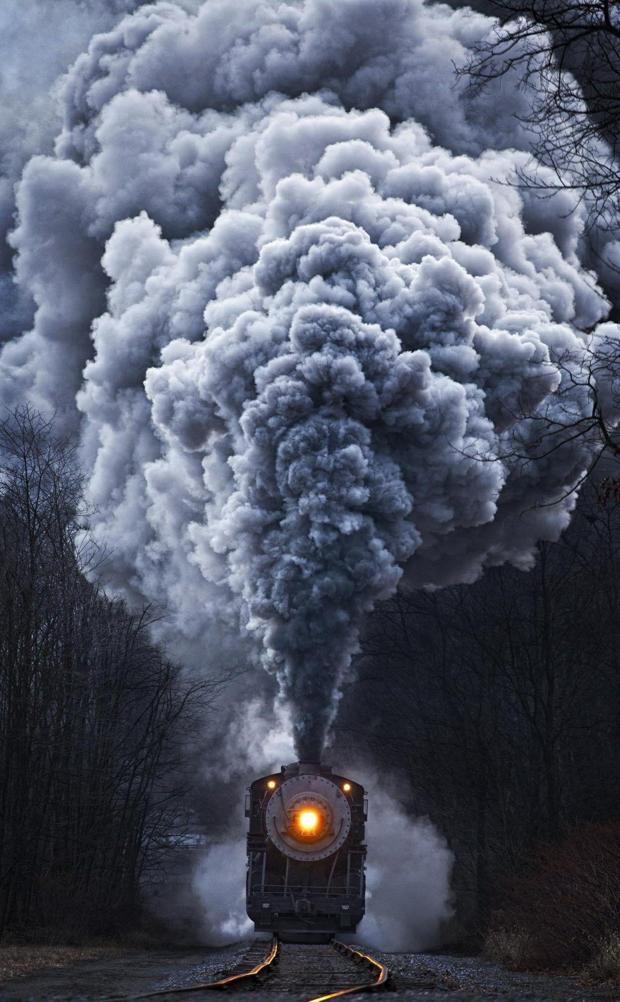 nature train portrait display steam 1080P