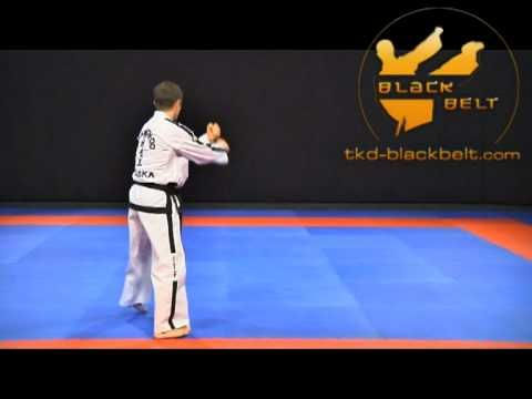 Tae Kwon Do See Video TaeKwondo ITF Forms on DVD