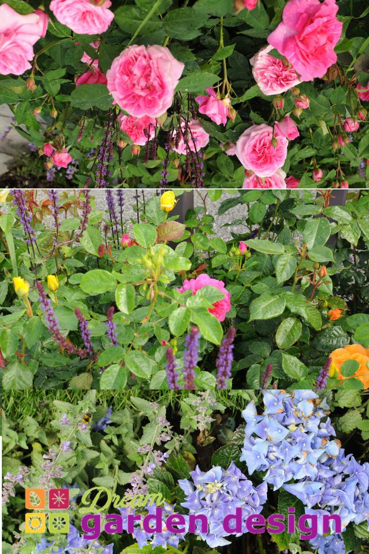 Pin By Horkans On Dream Garden Design Dream Garden Garden Design Garden