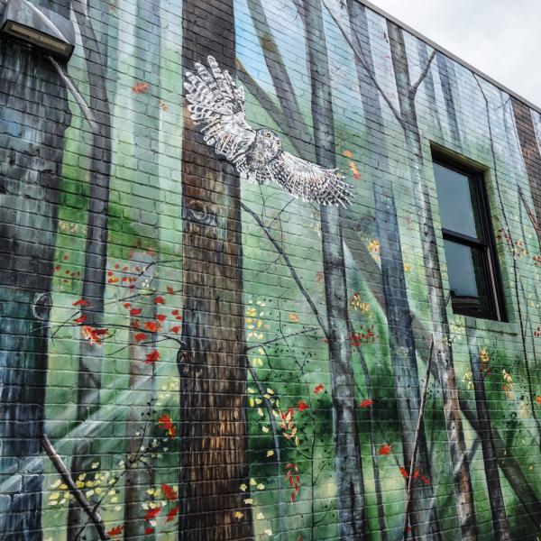 Wall Murals Of Greenville Sc The Eclectic Voyager Street Mural Mural Wall Murals