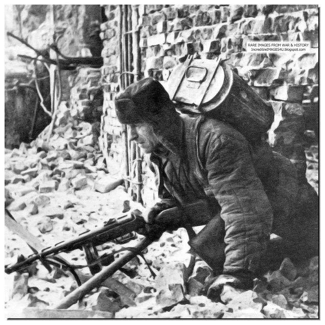 Battle of stalingrad date in Melbourne