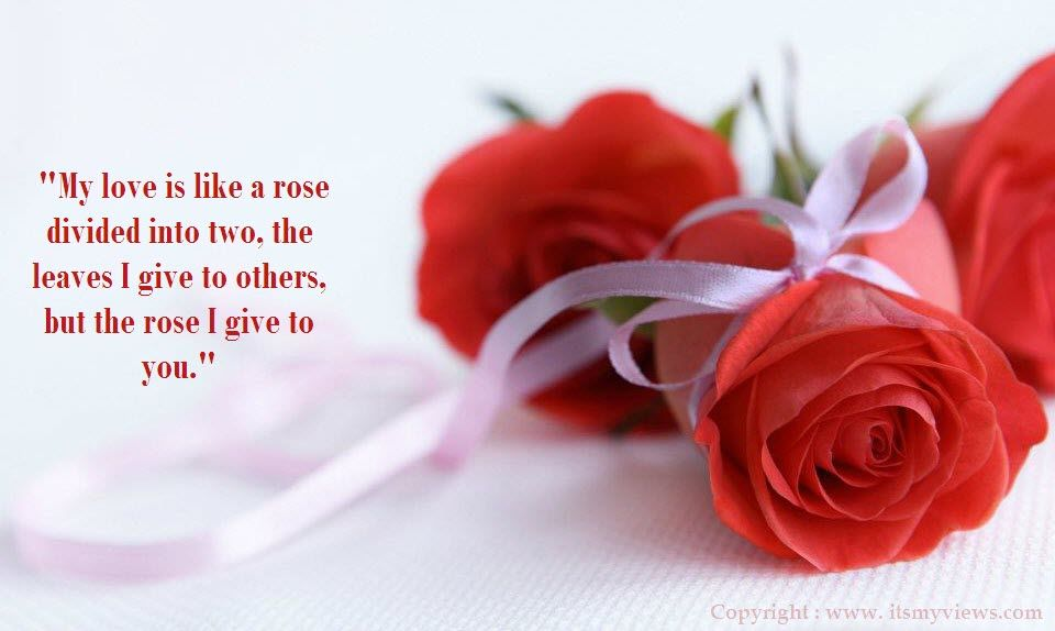 Red Rose Love Quotes | Latest Most Beautiful Red Rose ...