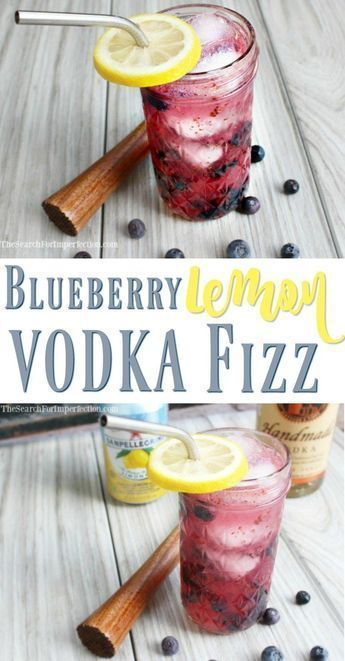 Blueberry Lemon Vodka Fizz