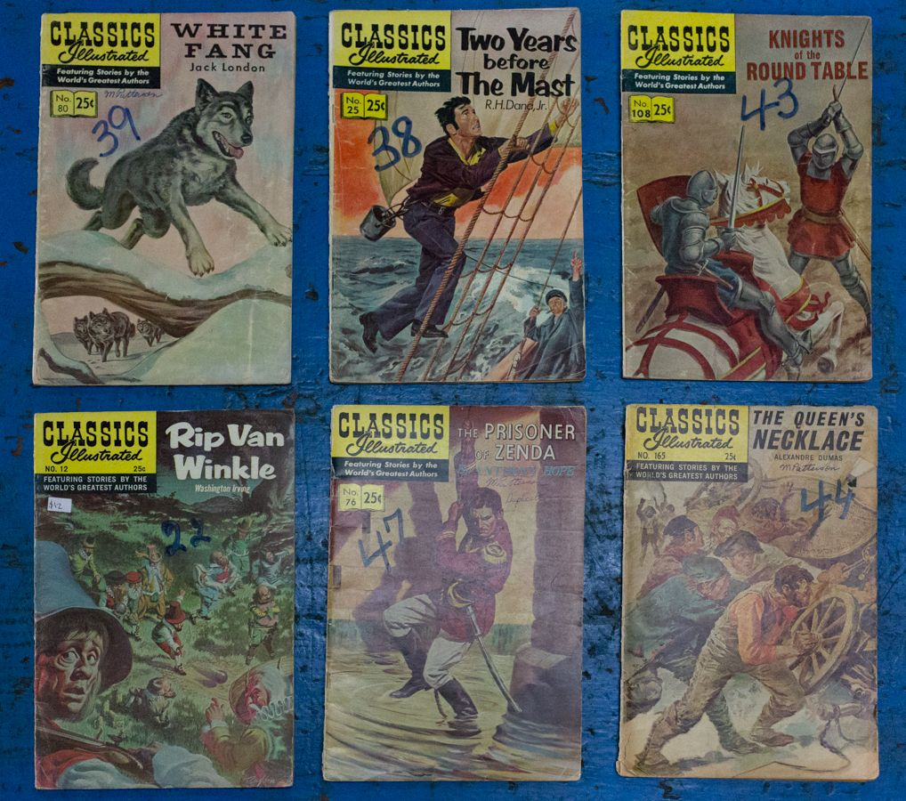 Classics Illustrated.  Quite the collection. Get started on collecting or finish round out your old collection.