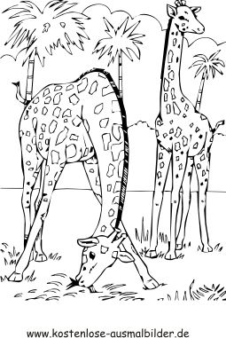 Ausmalbild Giraffen жирафики Pinterest Giraffe Coloring Pages