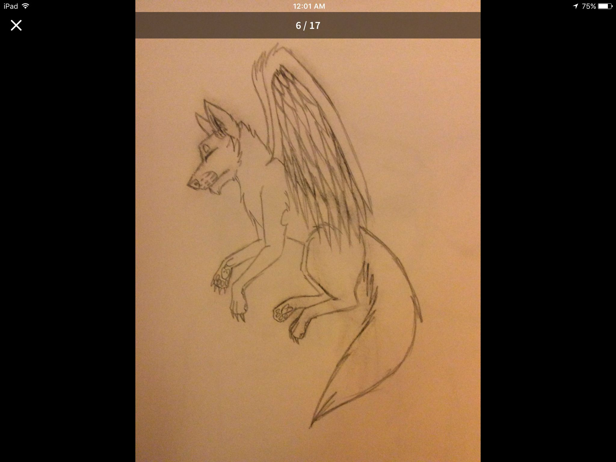 Orange Wolf With Wings Wwwtopsimagescom