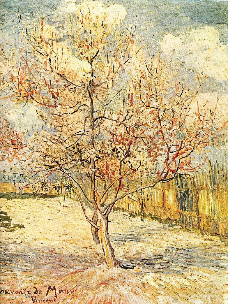 Árbol rosa en flor Van Gogh