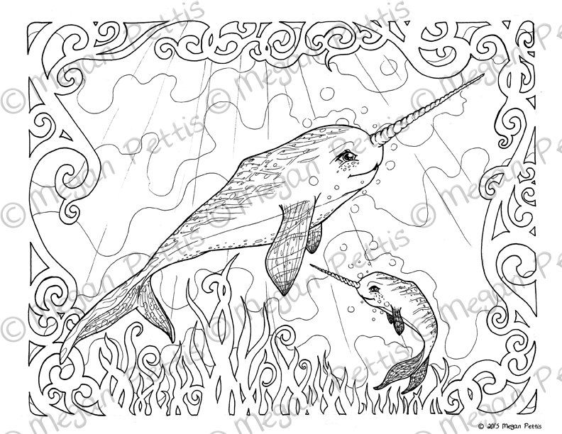 Narwhal Family Adult Coloring Book Page Whale Unicorn Instant Download Digital File