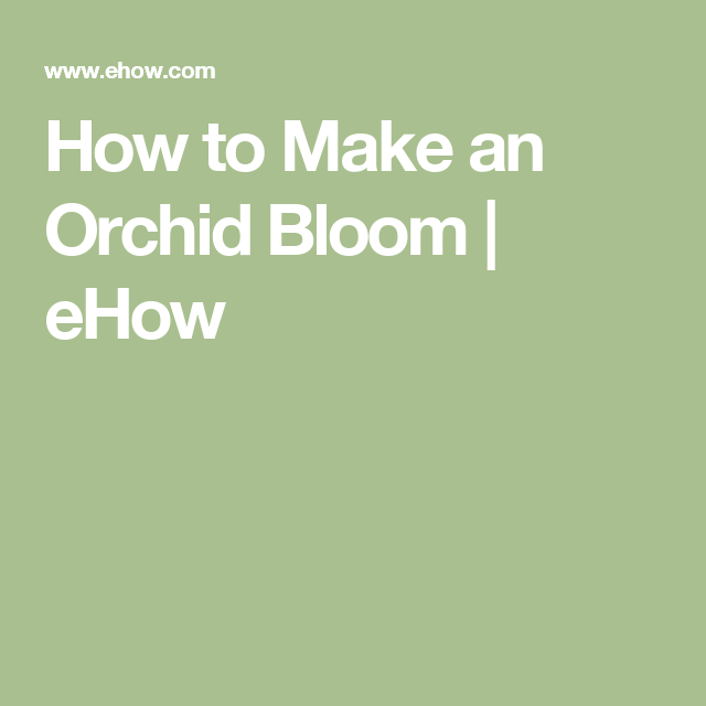 How to Make an Orchid Bloom | eHow