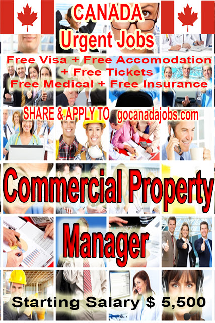 Commercial Property Manager Job Search In 2020 Jobs For Teachers Job Search Job Career