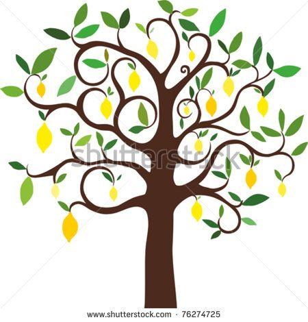 vector lemon tree - stock vector Lemons, Limes and Olive Trees