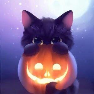 Pumpkin Kitty Wallpaper