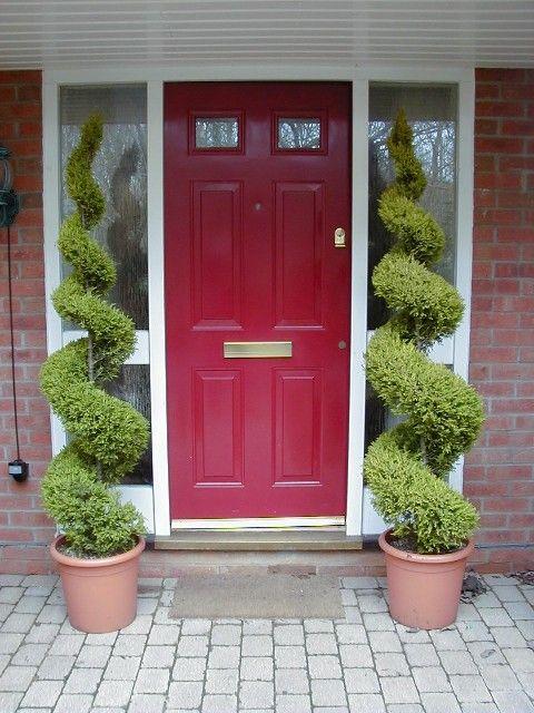 Front Door Topiary Landscaping In 2018 Pinterest Doors