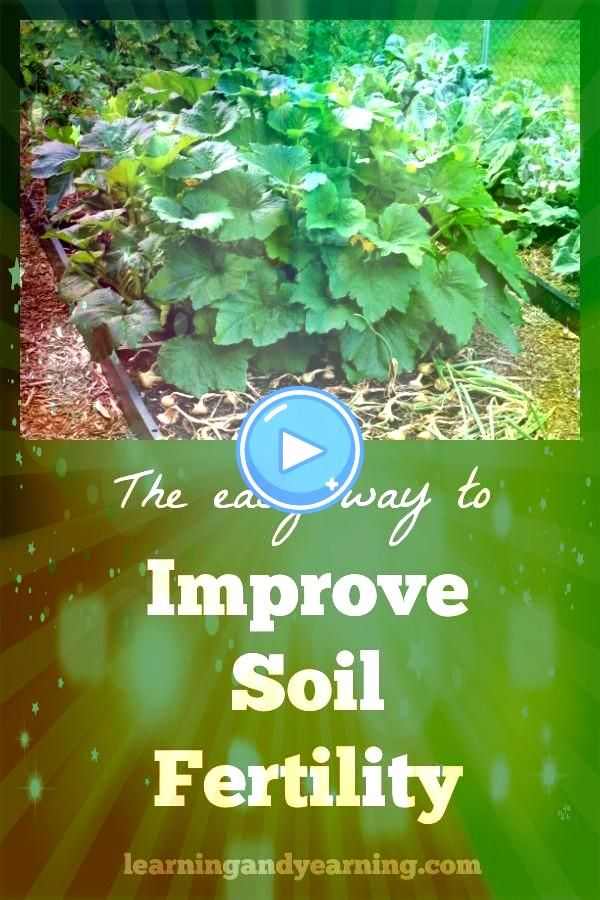 always encourage my students to improve soil fertility because healthy fertile soil will result in a healthy nutrientdense harvestI always encourage my students to improv...