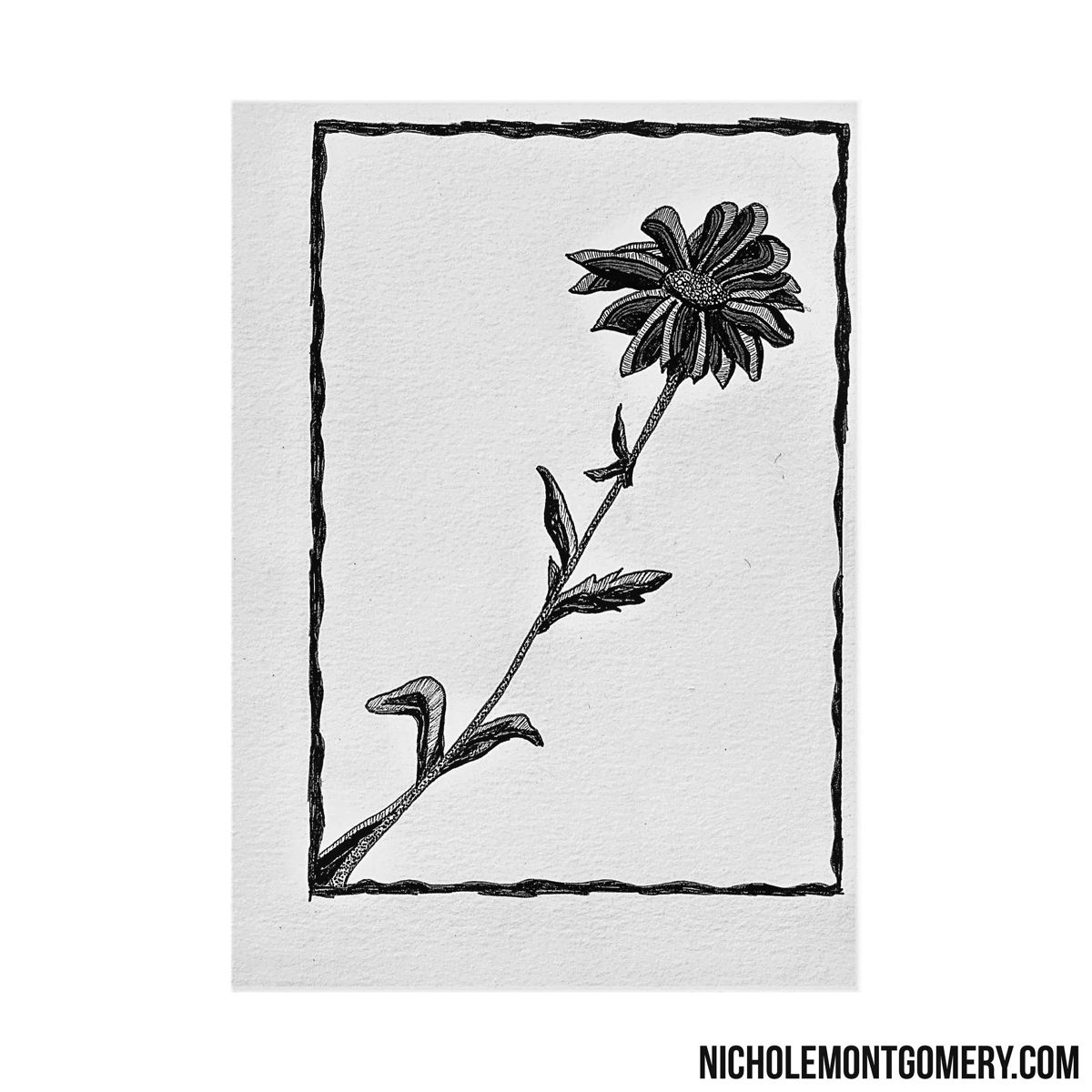 Purchase options: NicholeMontgomery.com • Artist: Nichole Montgomery Tulsa, OK  • #tulsaartist #Oklahomaartist #NicholeMontgomery #artist #art #drawing #artwork #doodle #illustration #ink #universe #penandink #inkdrawing #inked #drawings #garden #flowers #floral #design #draw #flower #oddities #lines #lineart #nature  #bw #bloom #zentangle #floral