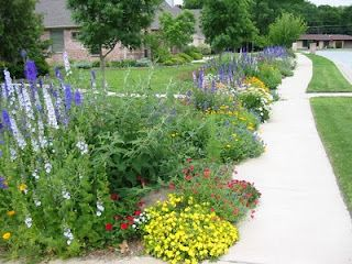 Wildflower Garden For Sidewalk Or Side Of The House Border Wildflower Garden Garden Design Plans Front Yard